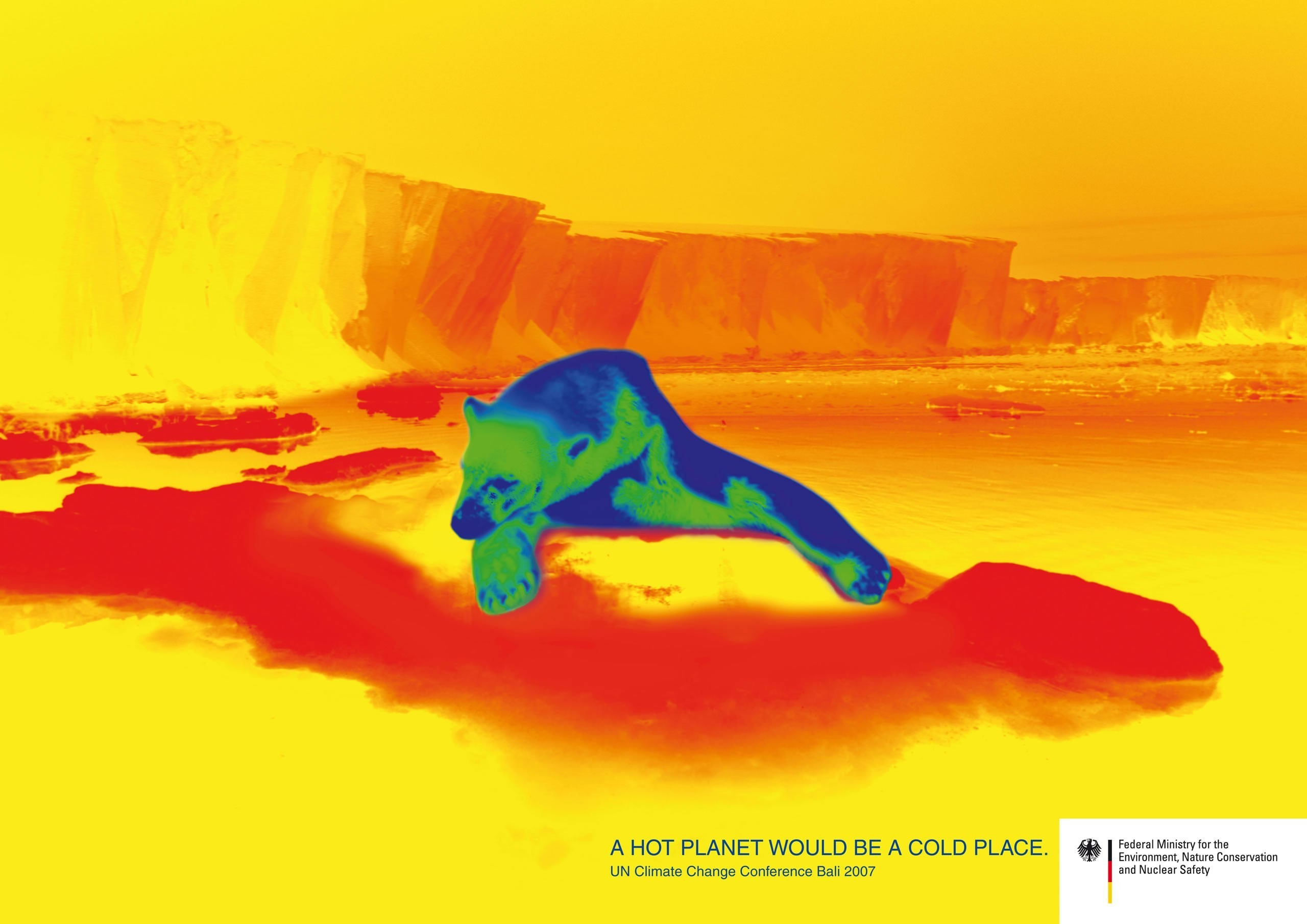 Thermal Images